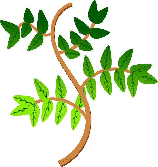 leaves-160960_640