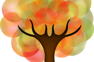 tree-2512882_640
